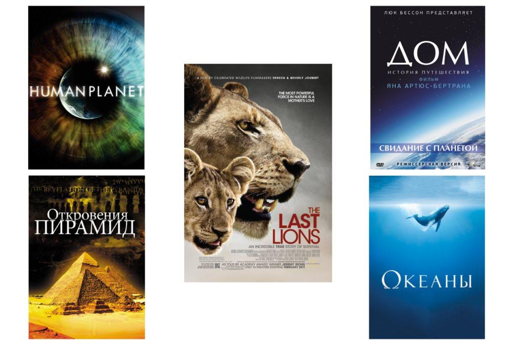 Как выбрать фильмы