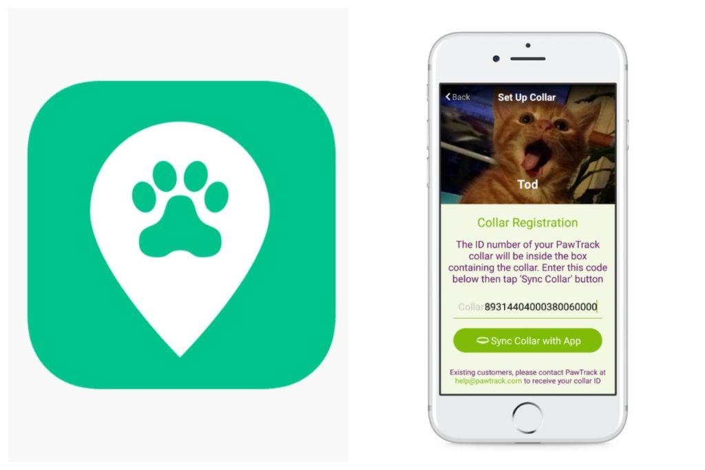 Полезные гаджеты для владельцев домашних животных