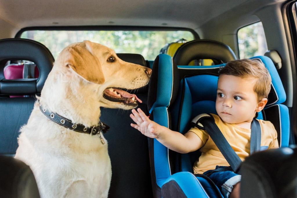 Как обеспечить безопасность ребенка